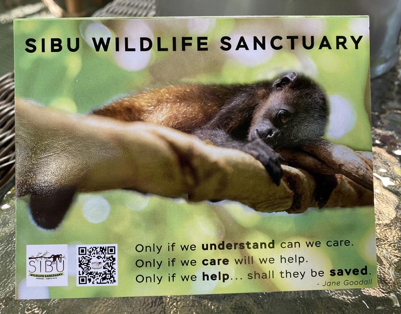 steun Sibu Sanctuary