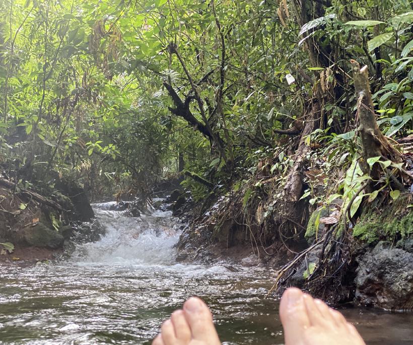 Bromelias thermale bron Dos Rios
