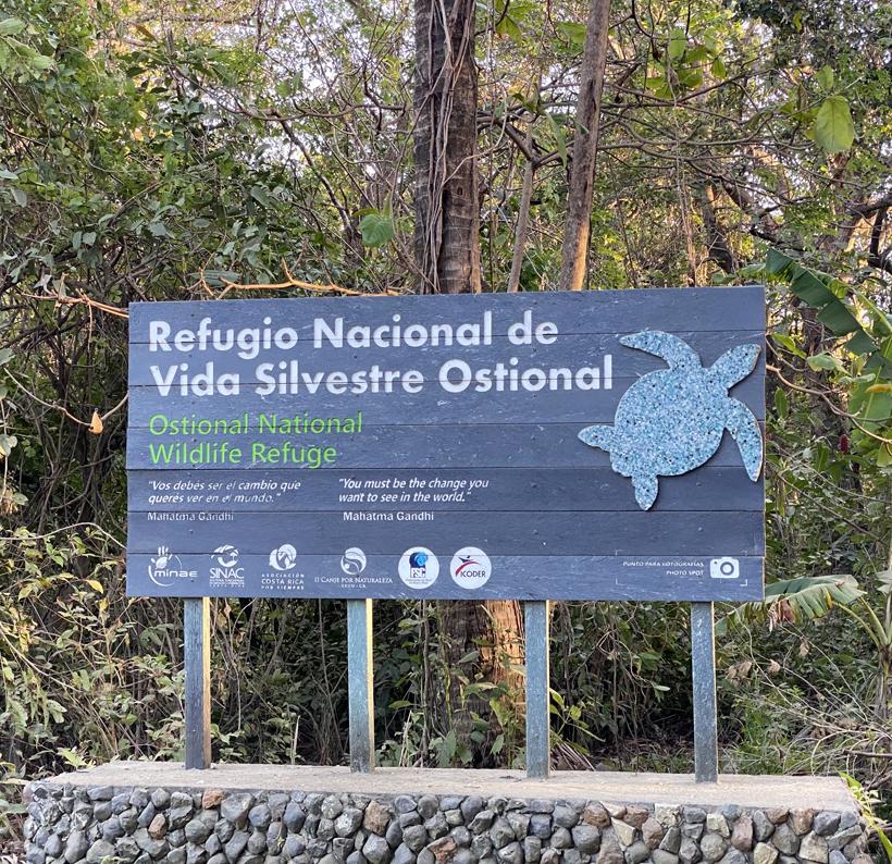 Ostional wilflife refuge
