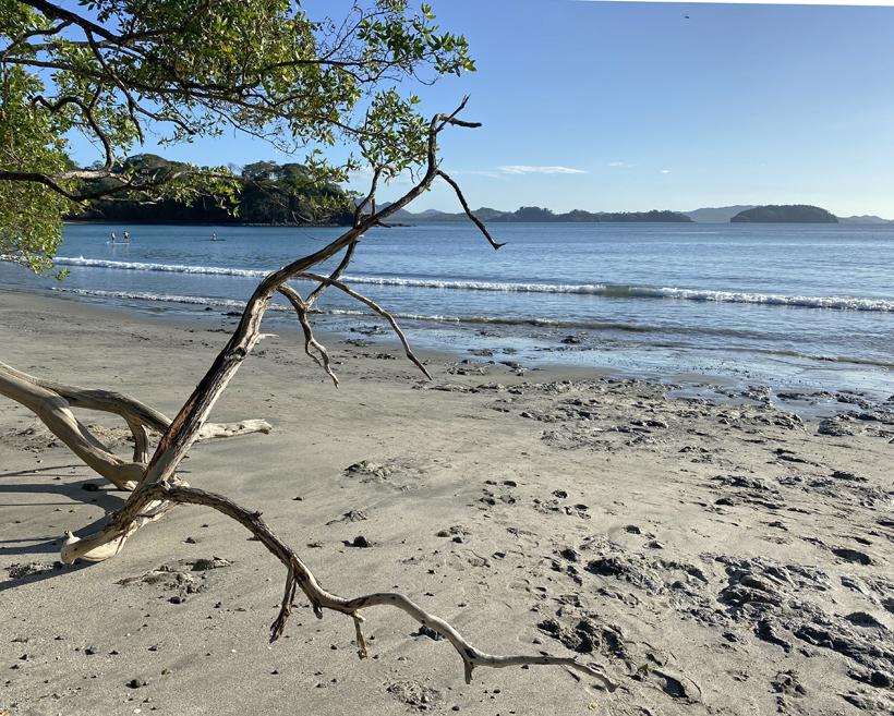 Playa Danta Gold Coast