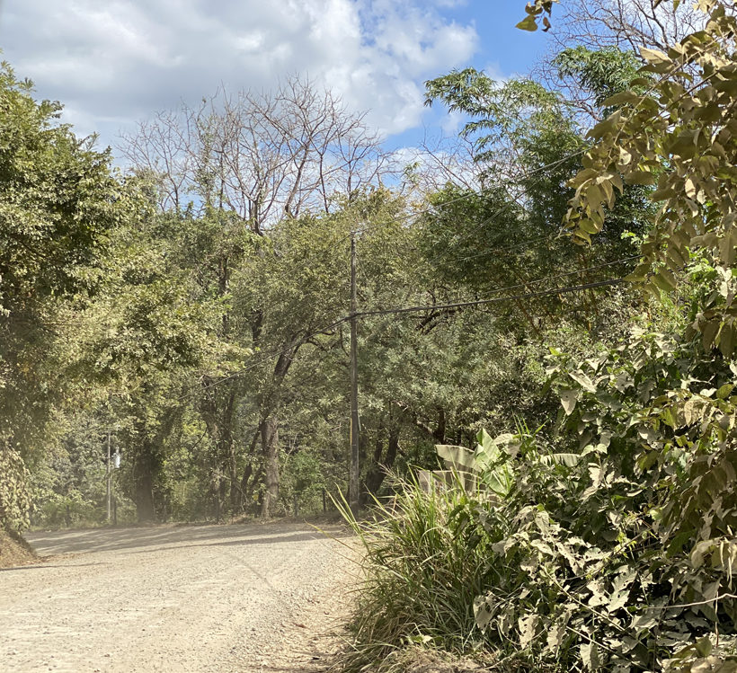 stoffige wegen in Nosara