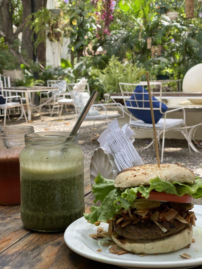 vegan burger in Nosara