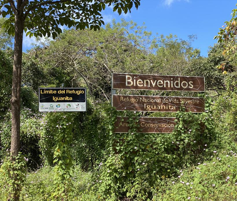 wildlife refugio iguanita