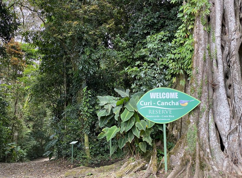Monteverde curi cancha start wandeling