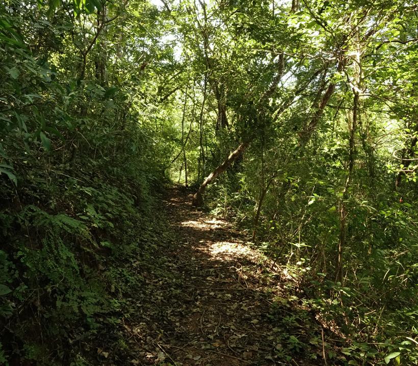 wandelen in Diria Nationaal Park