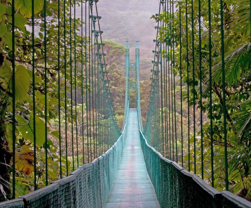 groene hangbrug Monteverde