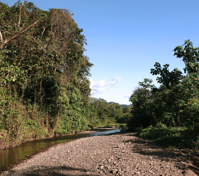rivier in San Ramon de Rio Blanco