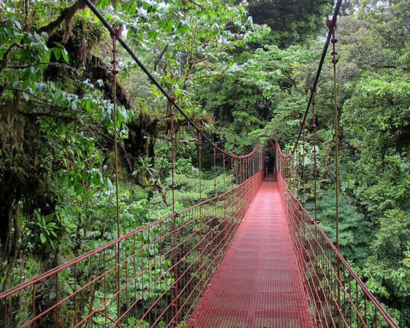 Monteverde cloud forest reserve rode brug