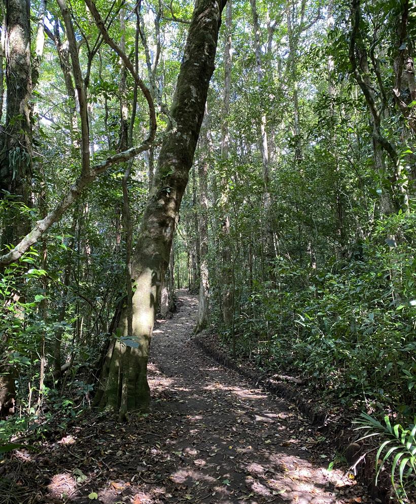 wandelpaden in Curi Cancha