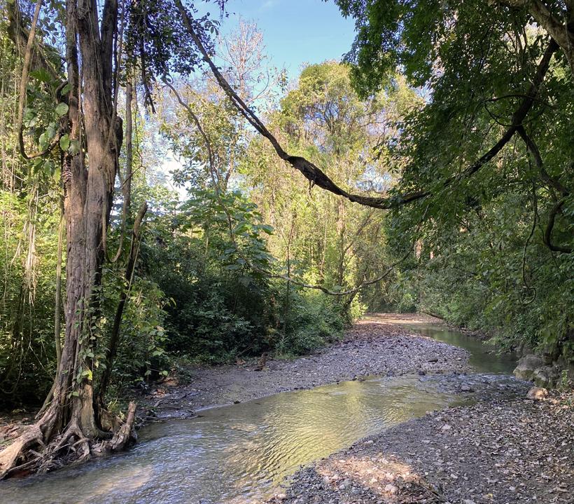 rivier in Karen Mogensen