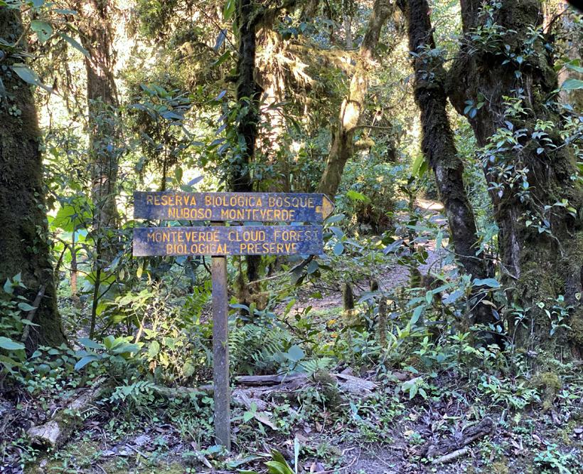 wandelen Monteverde Cloud Forest Reseve