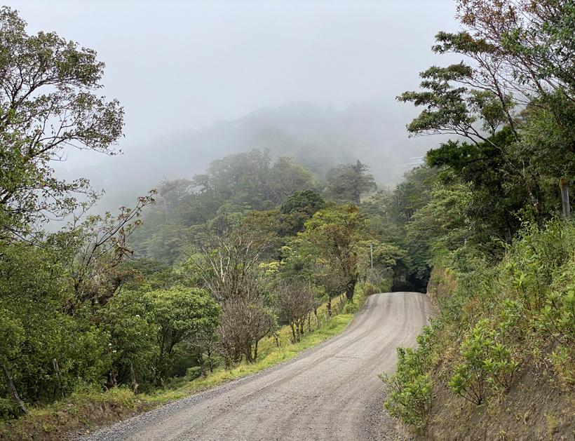 weg in nevelwoud Monteverde