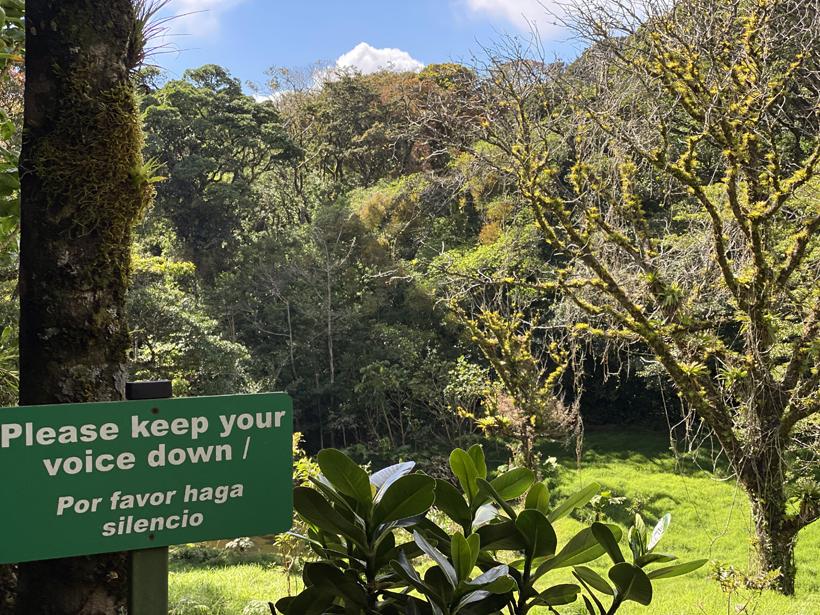 beste plaats quetzal Monteverde