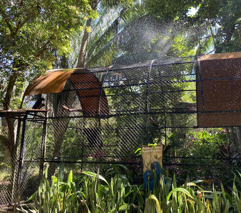 sproeiers bij vogels in Natuwa