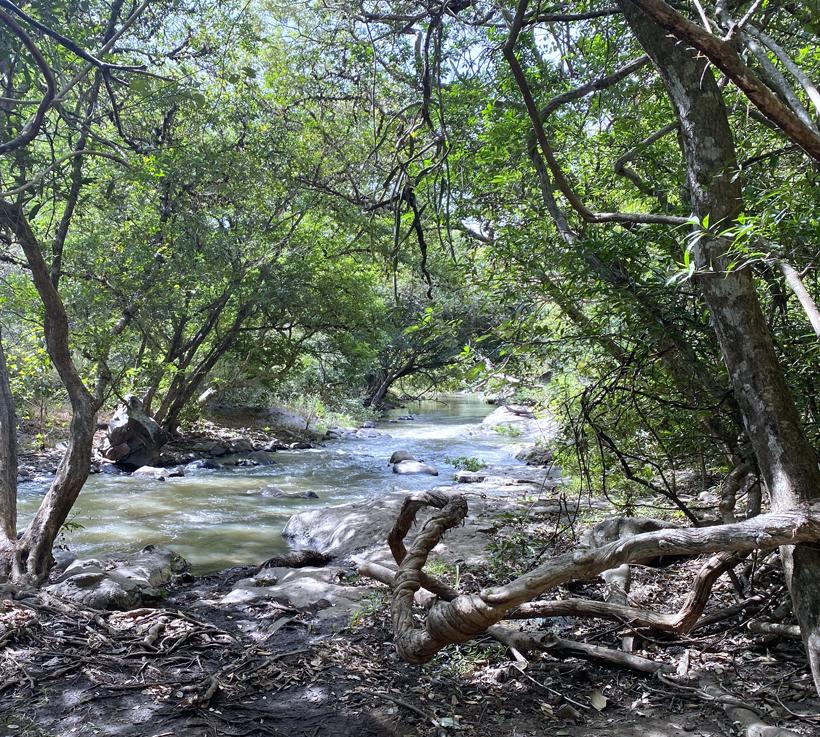 Rio Blanco na regen in Curubandé