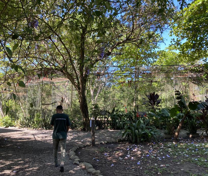 rondleiding dierenopvangcentrum Natuwa