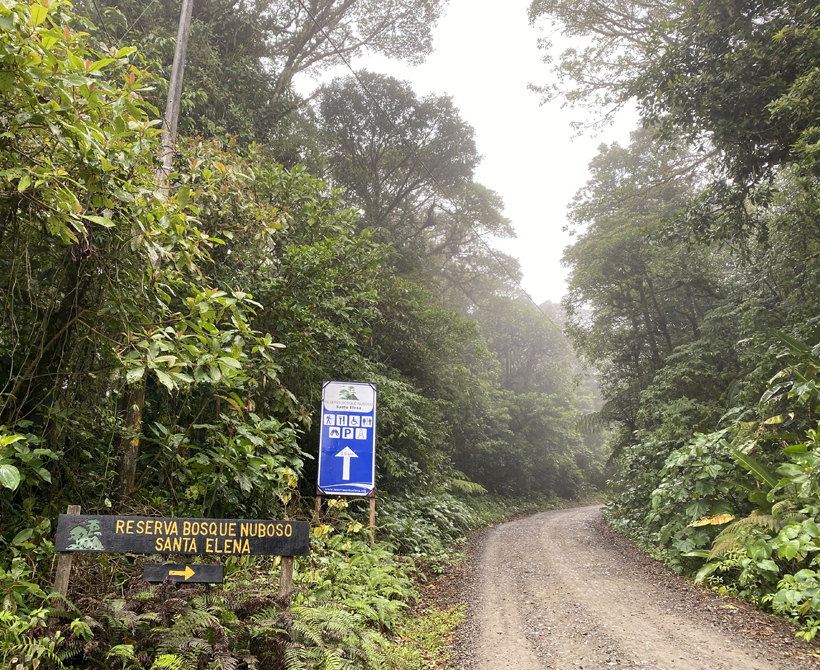 Naar Santa Elena Cloud Forest