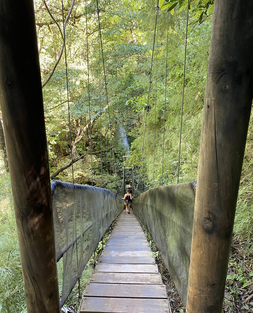 hangbrug naar waterval Oropendola