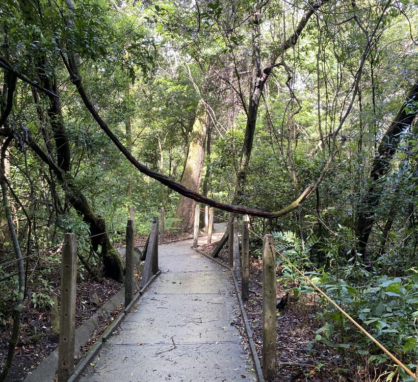 wandelpad in Rincon de la Vieja