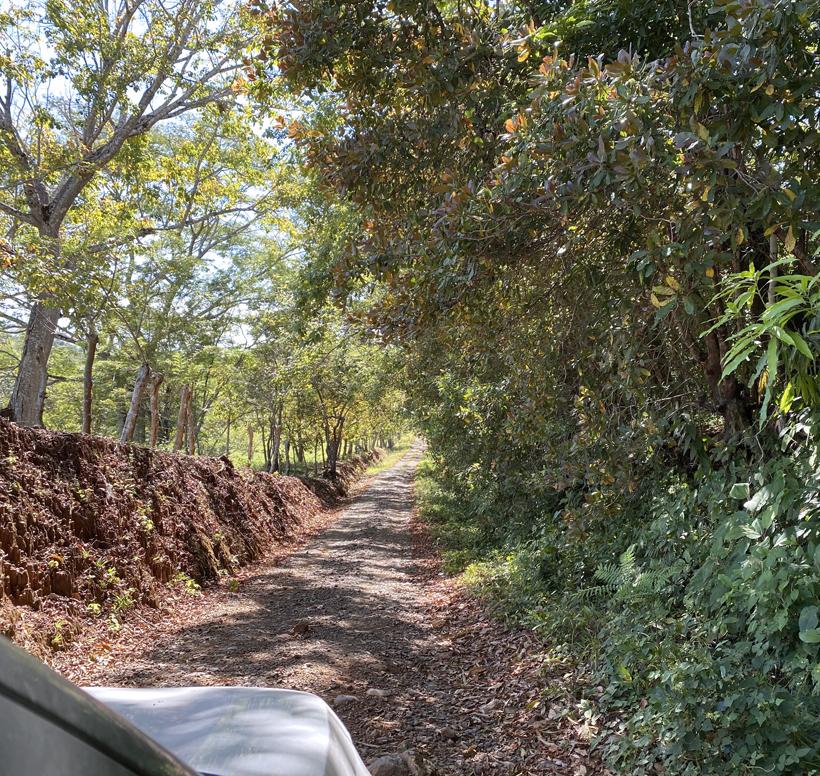 wegje naar Rio Ario en Cobano