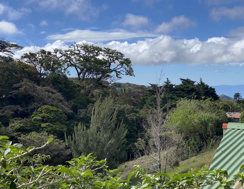 zicht vanop terras Guayaba Monteverde