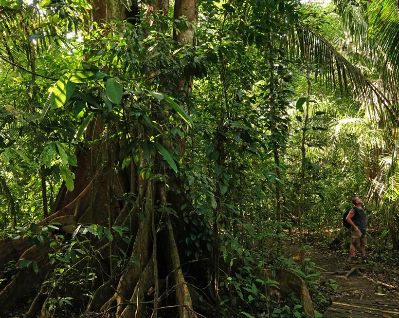 wandelen in Hacienda Baru