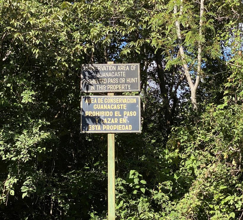 droog tropisch woud in Santa Rosa Nationaal Park