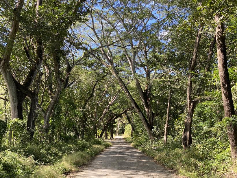 naar Santa Rosa Nationaal Park sector Murcielago