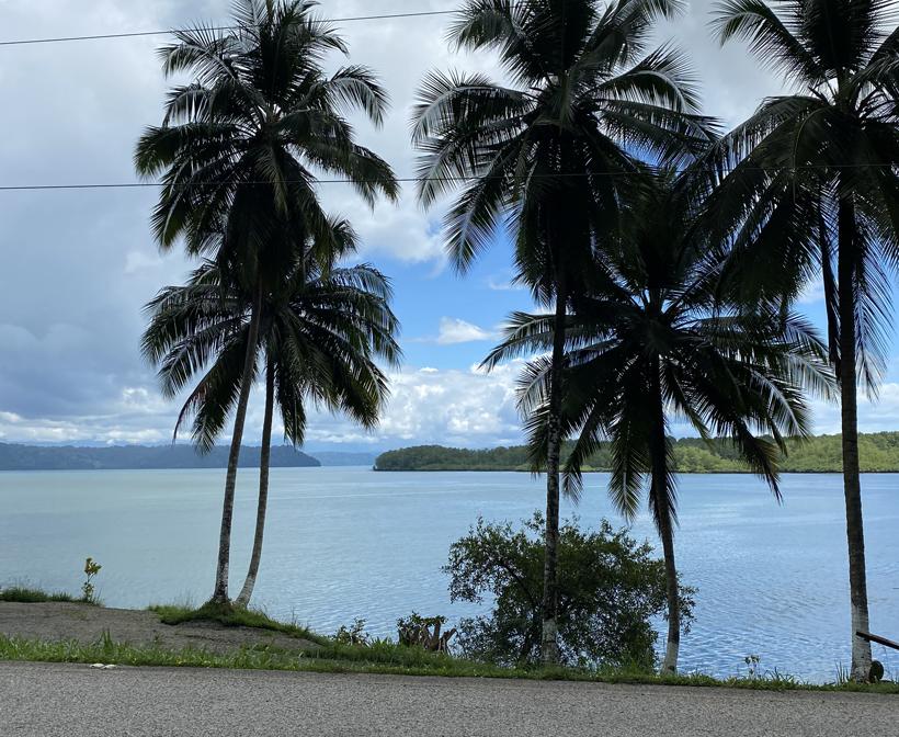 Rincon naast Golfo Dulce