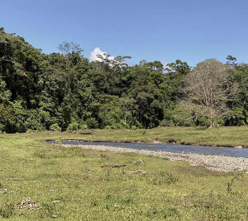 rio barrigones groene oevers
