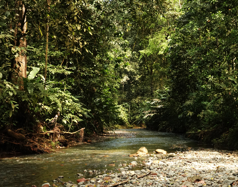 rivier barrigones