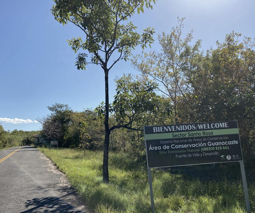 weg naar Santa Rosa Nationaal park