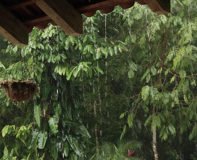 tropische regenbui osa